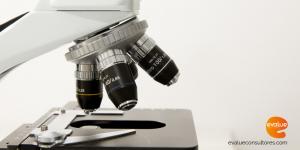 contratacion personal investigador evalue innovacion torres quevedo doctorados industriales
